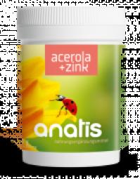 Acerola mit Zink 90 Kps.