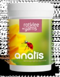 Rotklee (mit Yams, Cissus) 90 Kps.